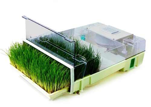 easygreen spreader settings for meijer fertilizer